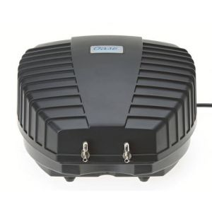 AquaOxy 1000 voorbeeld