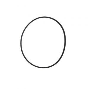 Mega Pool SC pomp: O-ring voor deksel