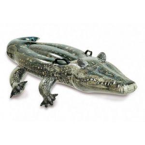 Krokodil ride-on  - 57551 ingebruik