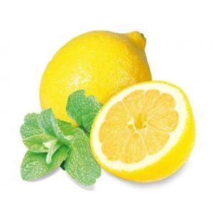 Saunageur: Lemon mint 100 ml