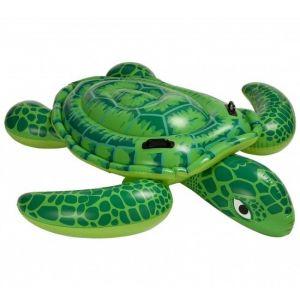 Schildpad groot - 56524 voorbeeld