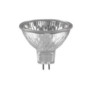 Vervangingslamp halogeen 100 Watt / 12 Volt voorbeeld