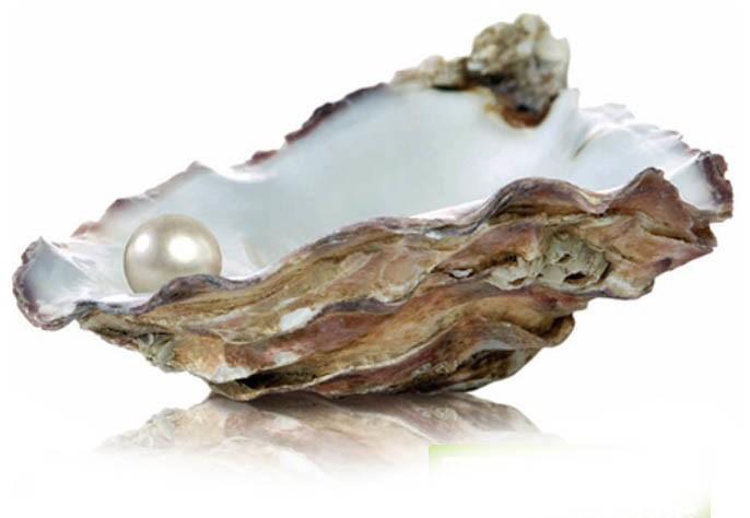 Vitrosphere glasparels oester